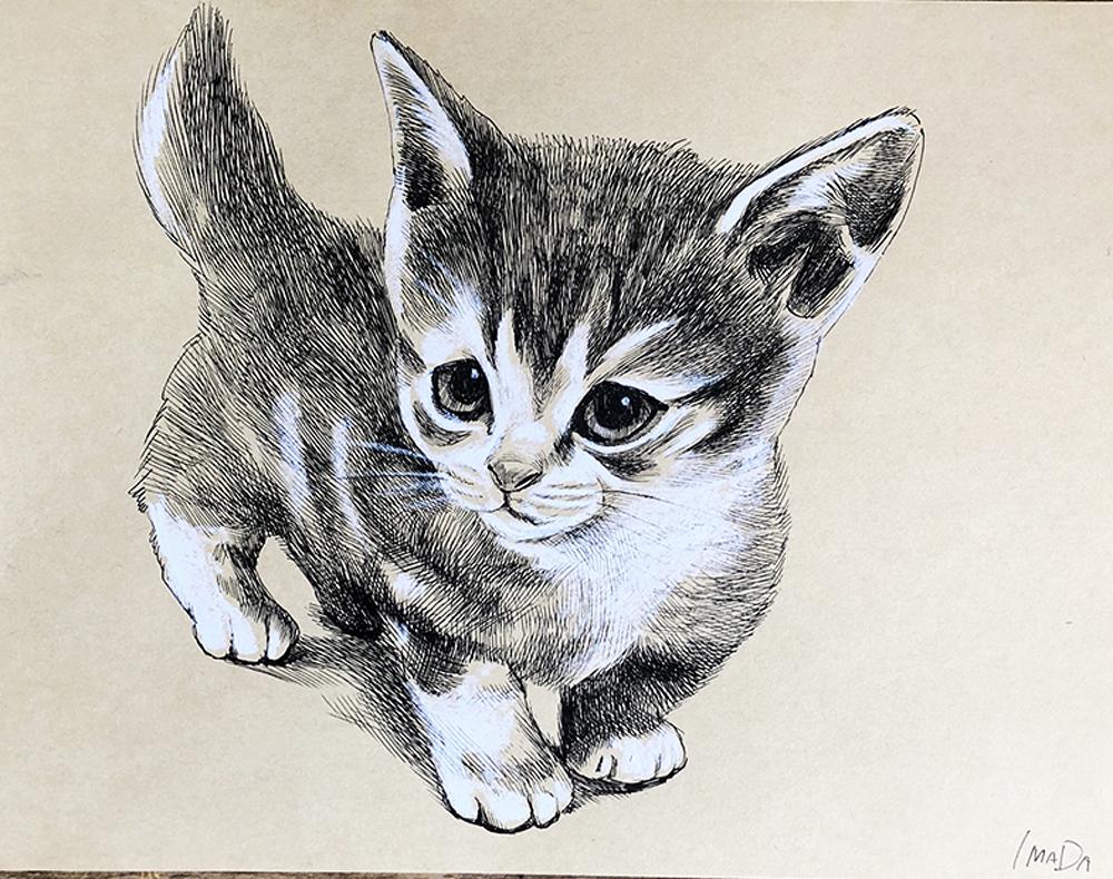 子猫イラスト 制作会社azaエンジニアリング